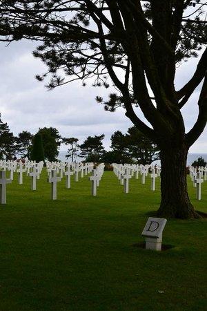 Monumento y Cementerio Estadounidense de Normandía: Normandy American Cemetary4