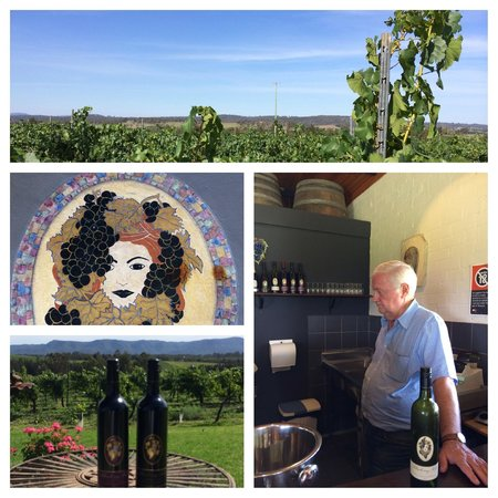 Hunter Valley Wine Tasting Tours : Blueberry Hill Winery