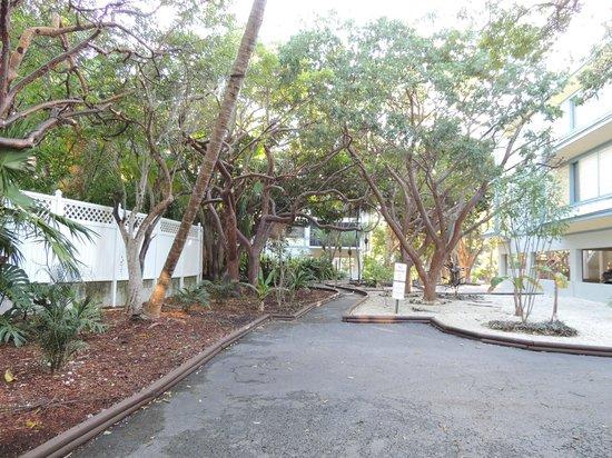 Banana Bay Resort and Marina Marathon: posizione tranquilla