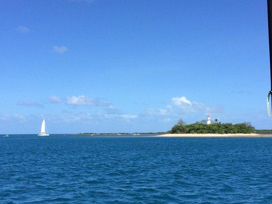 Sailaway: Michaelmas Cay