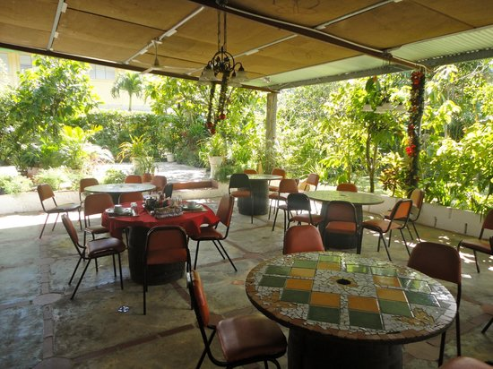 The main cafe seating in the covered beautiful garden setting ...
