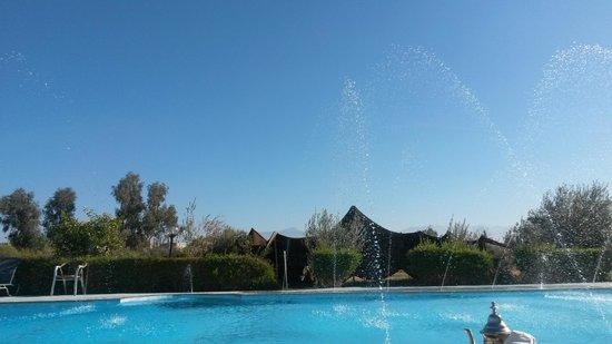 Riad Qodwa: Pool