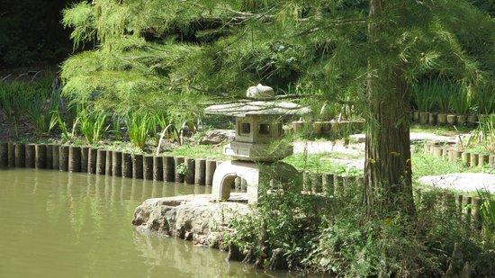 Sarah P. Duke Gardens: Asiatic Arboretum