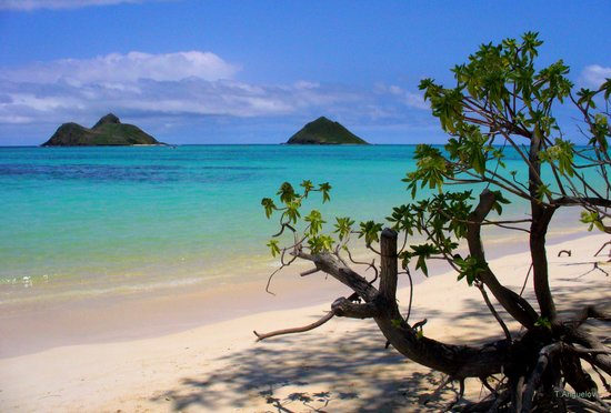 Best Beaches Around Hawaii