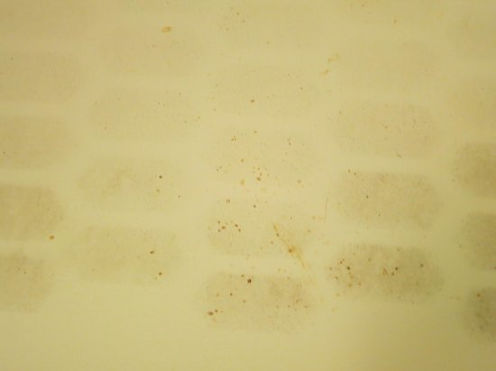 Red Roof Inn & Suites Beaumont: Dirty tub