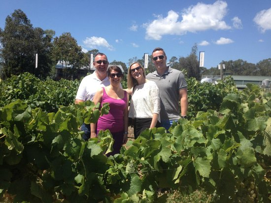 Hunter Private Tours: Great day in the vines!