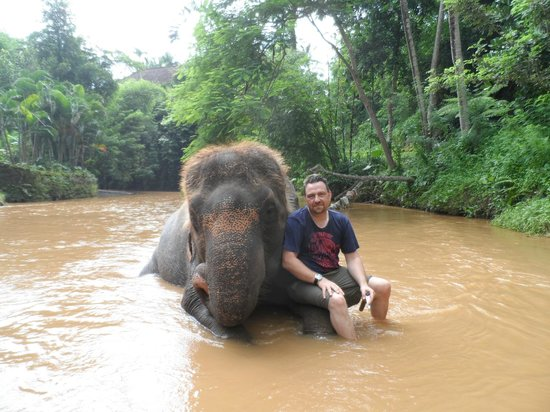 Sukawati, Indonesia: Me and my elephant