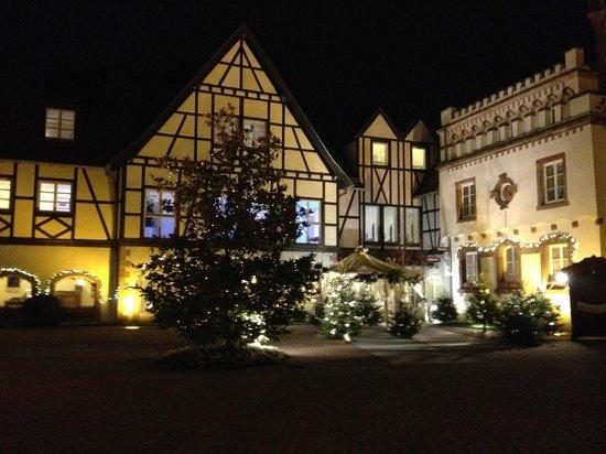 Chateau de L'ile: accueil