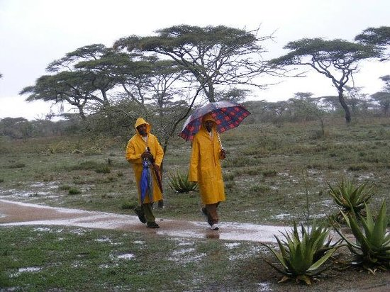 Ndutu Safari Lodge: It sometimes rains.