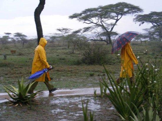 Ndutu Safari Lodge: Helpful staff keep on working whatever the weather.