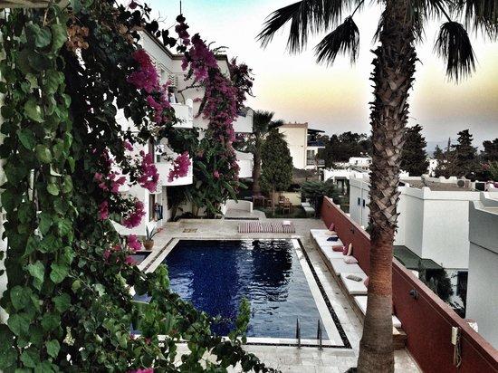 La Brezza Suite & Hotel: Balkonumuzdan havuz görünümü