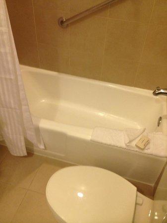 Hilton Miami Downtown : Bath