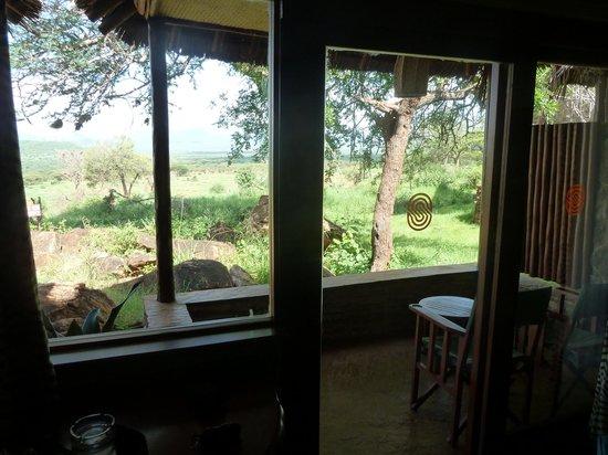 Kilaguni Serena Safari Lodge: View from our room