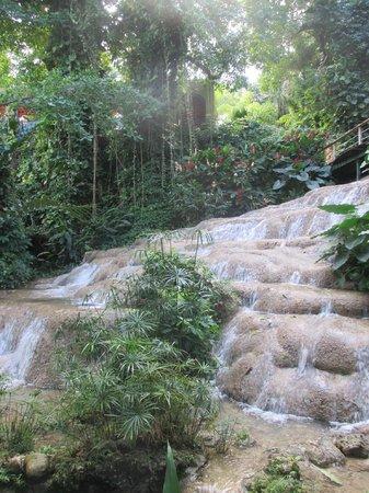 Coyaba River Garden and Museum : Mahoe Falls