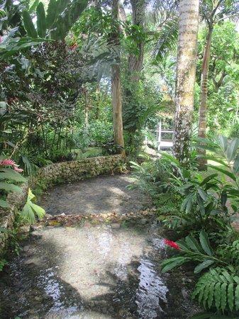 Coyaba River Garden and Museum : Coyaba Gardens