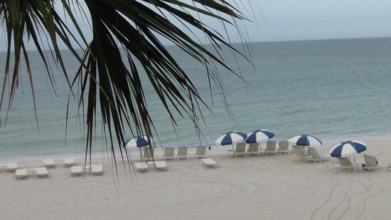 LaPlaya Beach & Golf Resort, A Noble House Resort : View of Beach and Gulf from Balcony