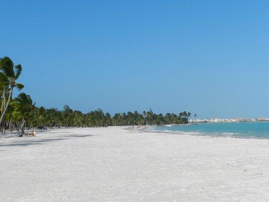 Marinarium Excursions - Discovery Cruise: praia de juanillo