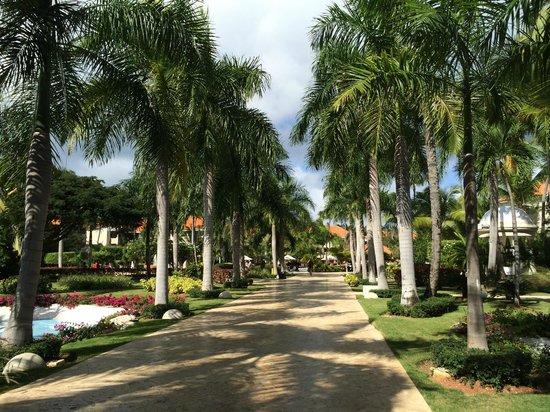 Dreams Palm Beach Punta Cana: Beautiful Landscaping