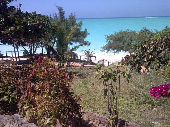 Sazani Beach Lodge: Garden