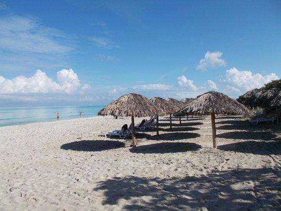 Be Live Experience Turquesa: The beach