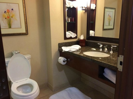 Coralville Marriott Hotel & Conference Center: Bathroom