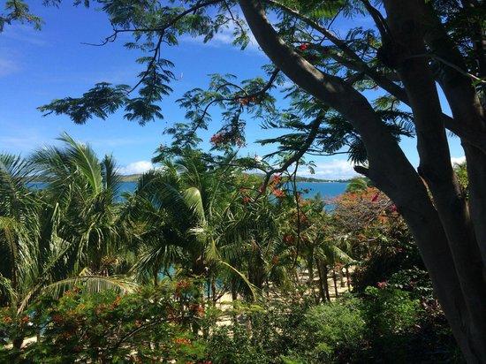 Wananavu Beach Resort: another beautiful view