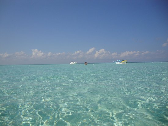 Privilege Aluxes : this is all you'll see... cristal clear water