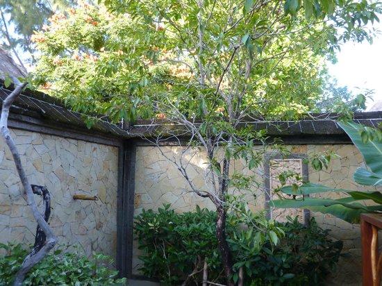 Turtle Inn : outdoor shower