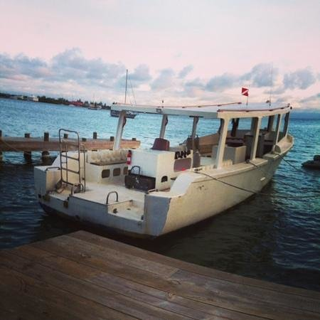 Utila Lodge: The dive boat