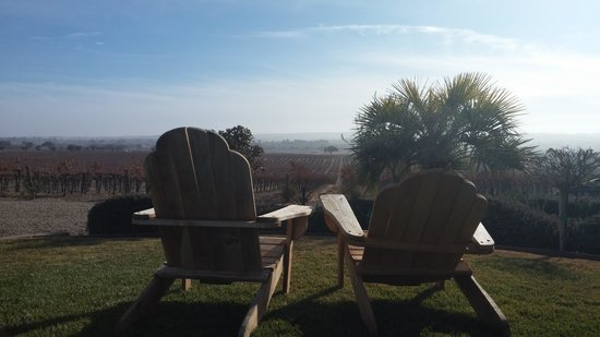 Paso Robles Inn: View from the Still Waters Winery in Paso Robles