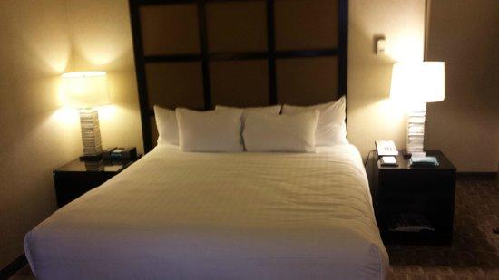 Hyatt Regency Louisville : King Bed