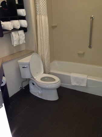 Hampton Inn & Suites New Orleans Downtown (French Quarter Area) : large bath