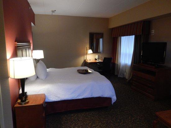 Hampton Inn & Suites Pittsburgh - Downtown : Room 801, Bedroom