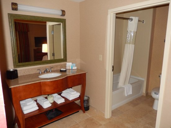 Hampton Inn & Suites Pittsburgh - Downtown: Room 801, Bathroom