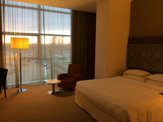 Sheraton Milan Malpensa Airport Hotel & Conference Centre: View of Room 2101