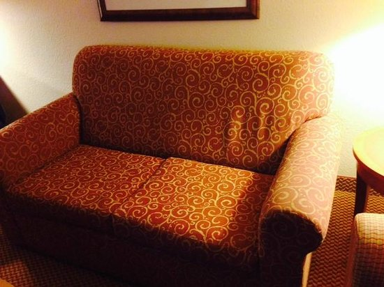 Hilton Garden Inn Columbus: Soiled sofa