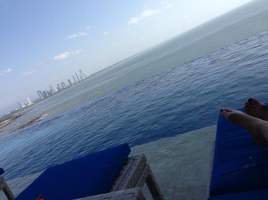 Trump Ocean Club International Hotel & Tower Panama: Great view of Panama City and the bay - Infinity pool
