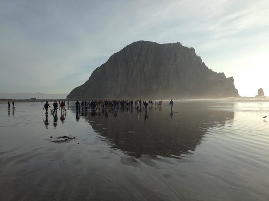 456 Embarcadero Inn & Suites: The beach with Morro Rock