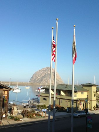 456 Embarcadero Inn & Suites : View from the breakfast room, The Bird Feeder