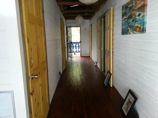 Blue Dolphin Guesthouse: Hallway