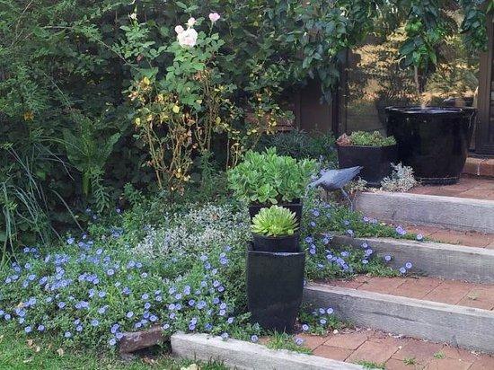 Glenhope Alpacas B&B Accommodation Armidale: View of Garden