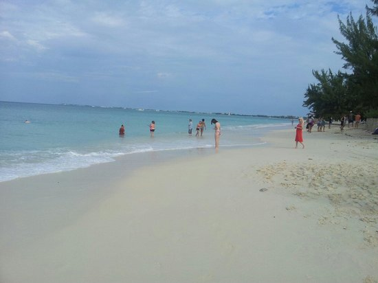 Royal Palms Beach Club: Spiaggia