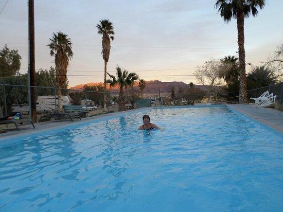 Shoshone Inn: Hot spring pool at Shoshone RV Park