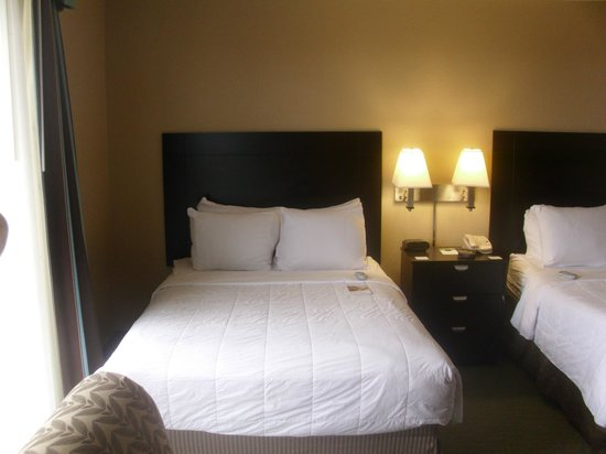 Radisson Hotel Cincinnati Riverfront : NICE Sleep Number Bed