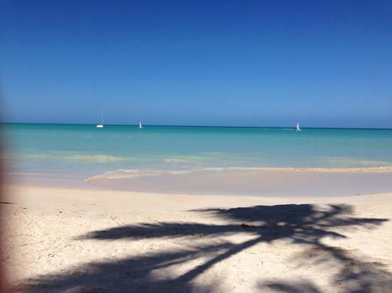 Sandals Grande Antigua Resort & Spa : Our view from the bar at the resort, amazing