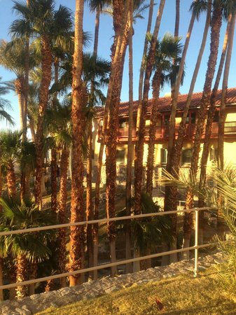 Furnace Creek Inn and Ranch Resort: garden side rooms