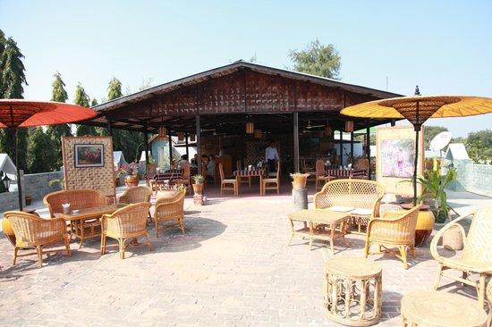 Restaurant Trattoria - La Terrasse : La Terrasse