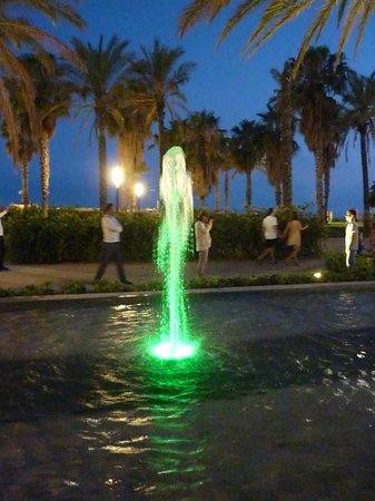 Illuminated Fountain: Tender Green