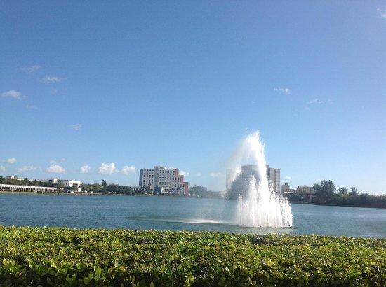 PULLMAN Miami Airport hotel: Beau complaxe mais un peu loin du centre