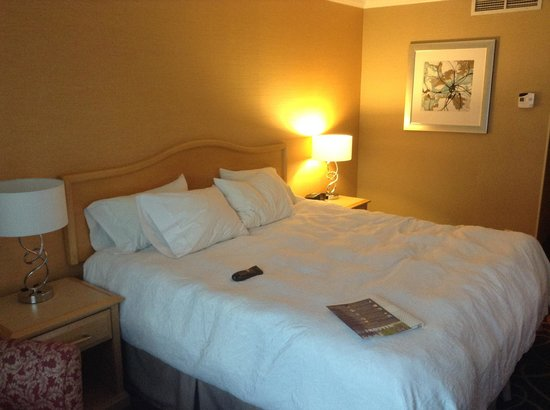 Hampton Inn & Suites Downtown Vancouver : King Bed